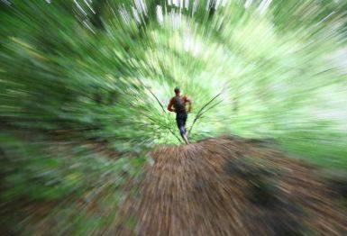 biegania w lesie