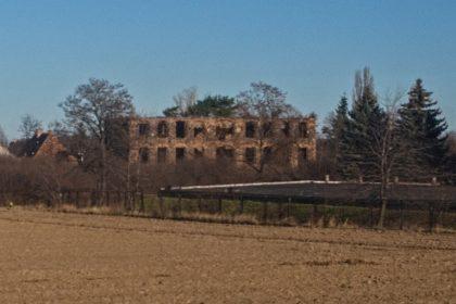 pałac w cierniach